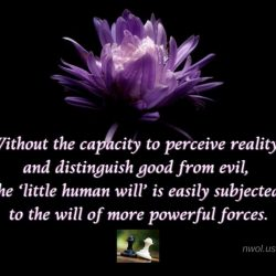Without the capacity to perceive reality