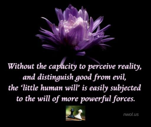 Without the capacity to perceive reality, and distinguish good from evil, the 'little human will' is easily subjected to the will of opposing forces.