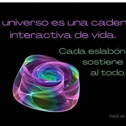 El universo es una cadena