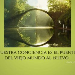 Nuestra conciencia es el puente