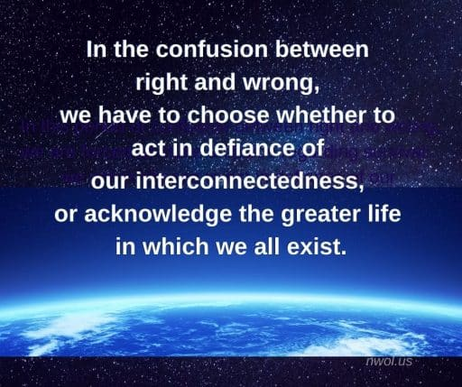 In the confusion between right and wrong, we have to choose whether to act in defiance of our interconnectedness, or acknowledge the greater life in which we all exist.