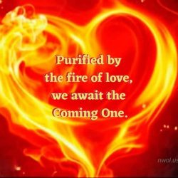Purified by the fire of love