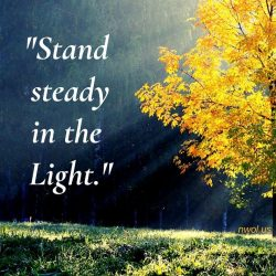 Stand steady in the light