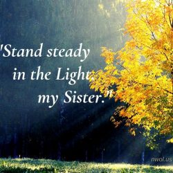 Stand steady in the light my Sister