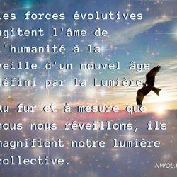Les forces evolutives