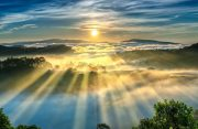 Sunrise over hillside a pine forest with long sun rays pass through valley with pines yellow sunny mornings this place more lively, warm and tranquil welcome to beautiful new day