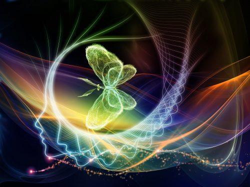 Image - Evolution of Consciousness