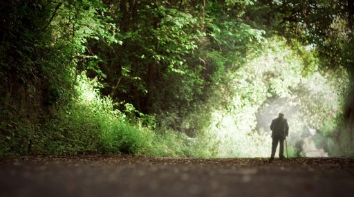 An old man walking along a green wood's path. The concept of healthy life and being young inside