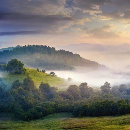 mysterious fog on hillside in rural area